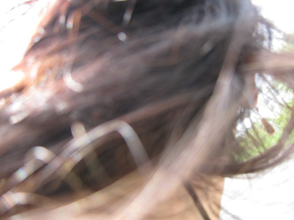 Spin Selfie