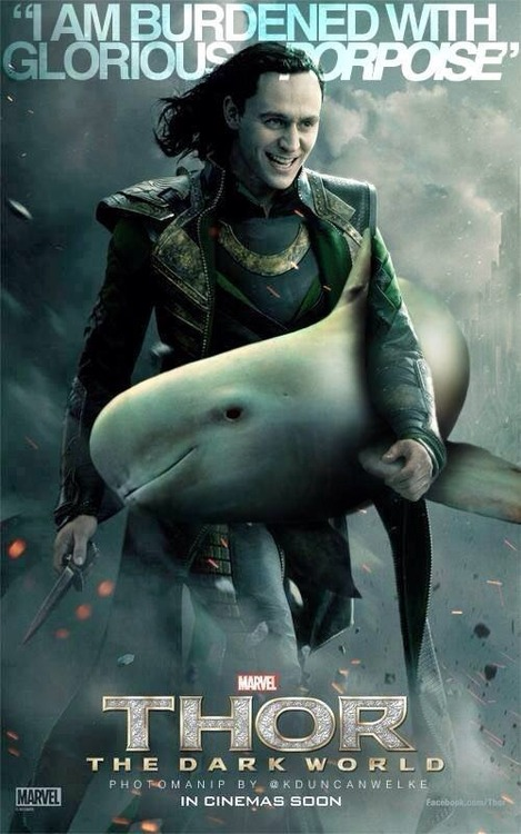 Loki Humor Glorious Porpoise Poster